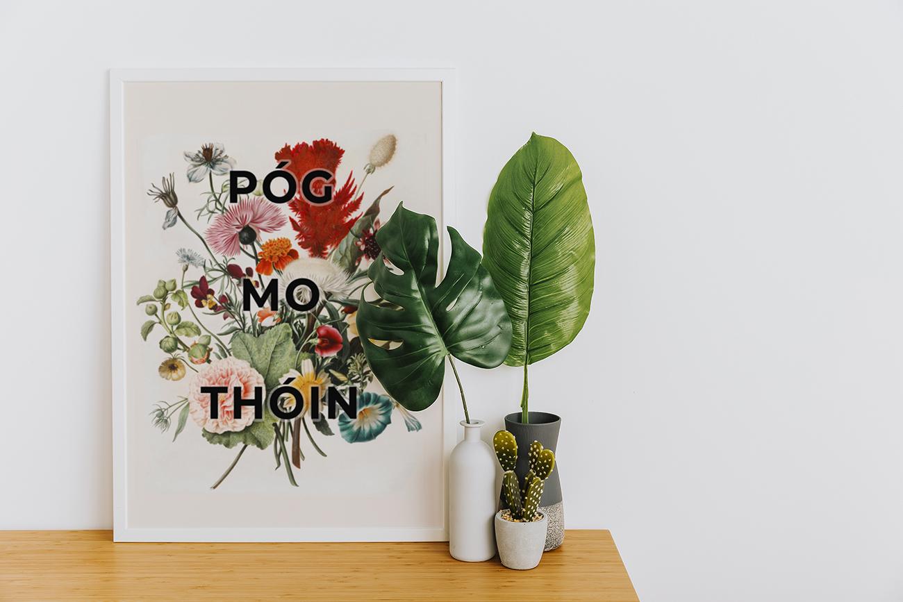 POG-MO-THOIN-POSTER-FUNNY-IRISH-WALL-ART-FLORAL-PRINT